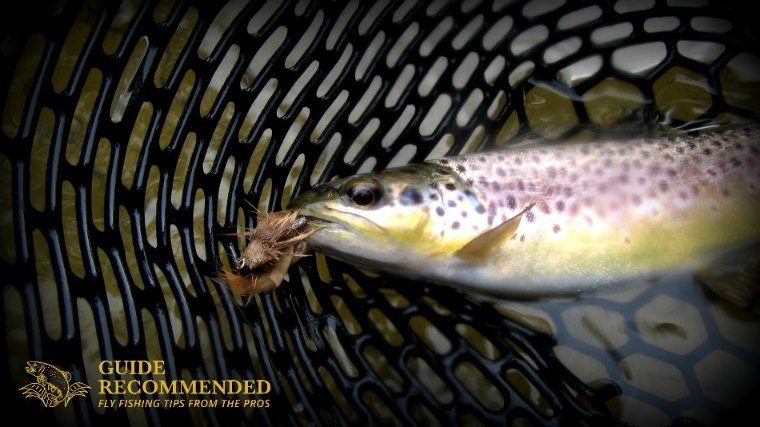 13 Favorite Flies For Catching Brown Trout