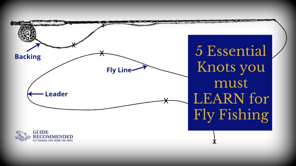 Knots for fly fishing