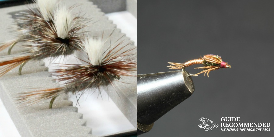 adams fly and pheasant tail nymph