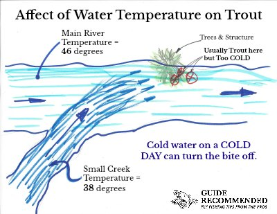 affect of water temperature on trout