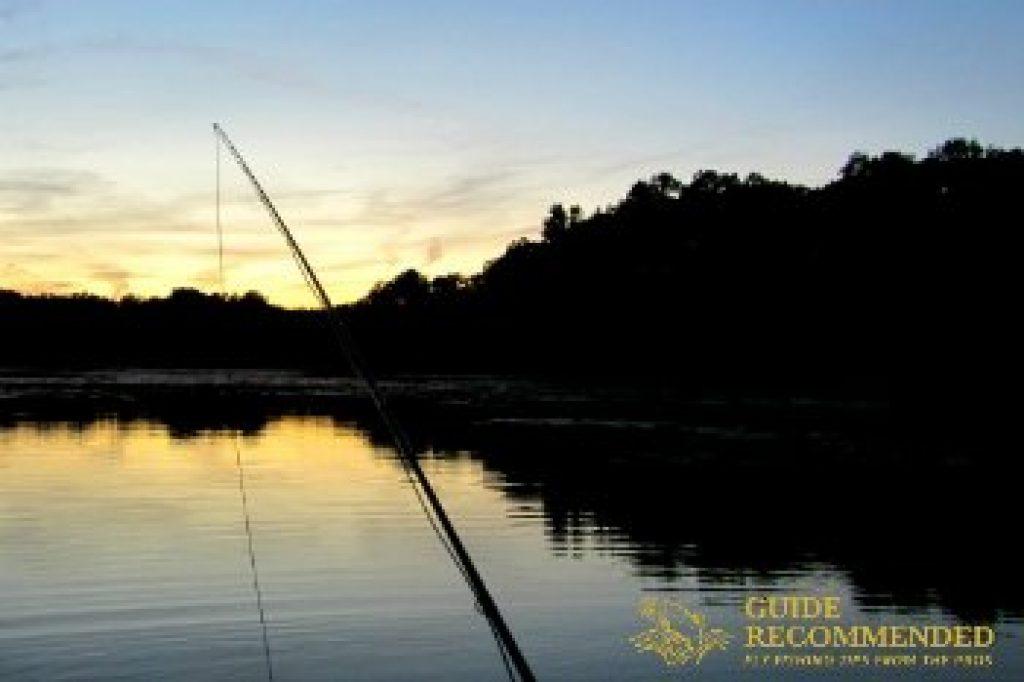 best time to catch bluegills