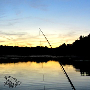 best time to fly fish