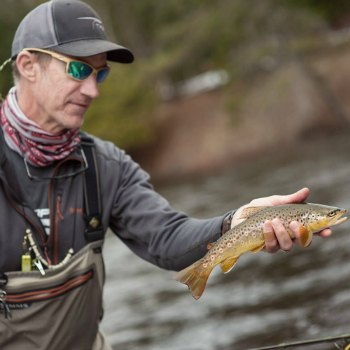 brown trout fly fishing in Michigan