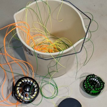clean fly fishing line