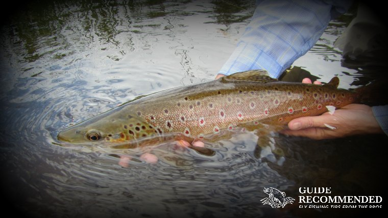 16 Best Places to Fly Fish in North Carolina