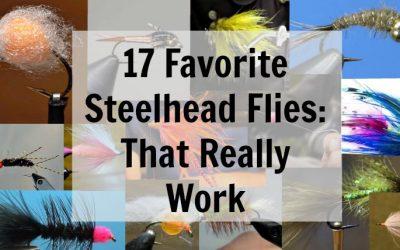 17 Favorite Steelhead Flies: That Really Work