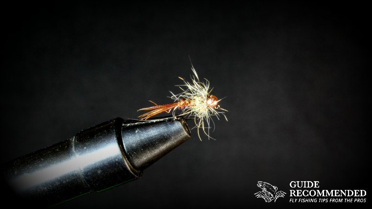 What is a WET FLY in Fly Fishing and which WET FLY is BEST