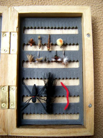 flies for Maine