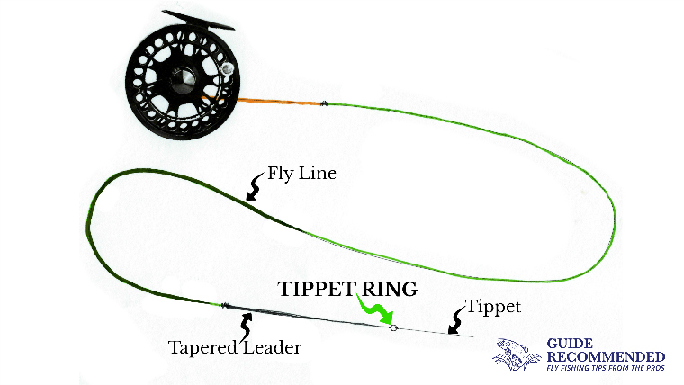 What Is a Fly-Fishing Tippet Ring and How to Set Them Up?