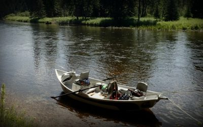 11 Best Places to Fly Fish in Wisconsin: Maps Included