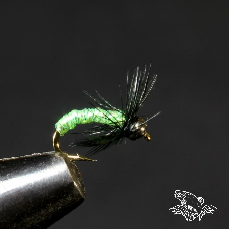 green caddis wet fly