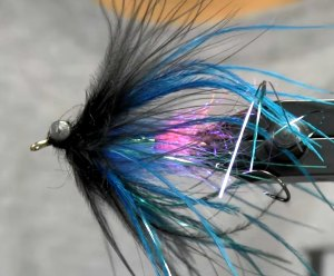 guide intruder fly for steelhead