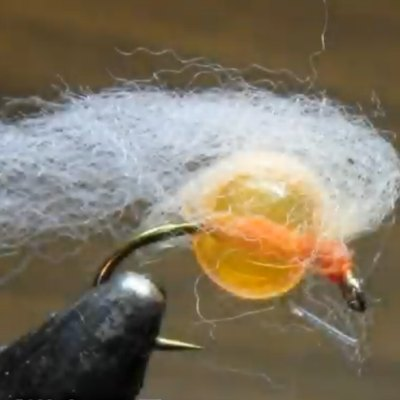 otters milking egg fly for steelhead