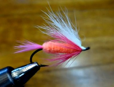polar shrimp fly for steelhead