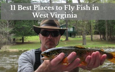 11 Best Places to Fly Fish in West Virginia: MAPS INCLUDED