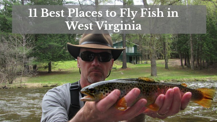 Fly Fish in West Virginia