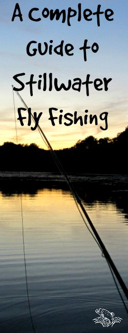 Guide to Fly Fishing in Stillwater
