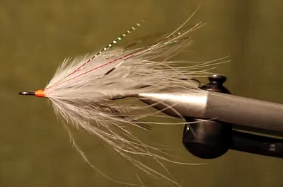 Hoh Bo Spey Fly for Steelhead