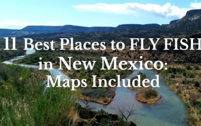 11 Best Places to Fly Fish in New Mexico: MAPS INCLUDED