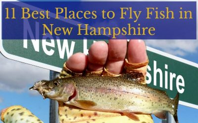 11 Best Places to Fly Fish in New Hampshire: MAPS INCLUDED