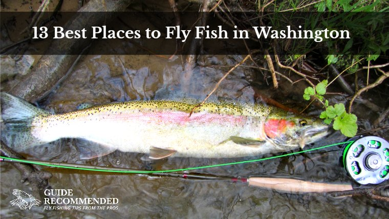 13 Best Places to Fly Fish in Washington State: Maps Included