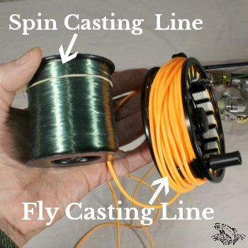fly line and spin cast line