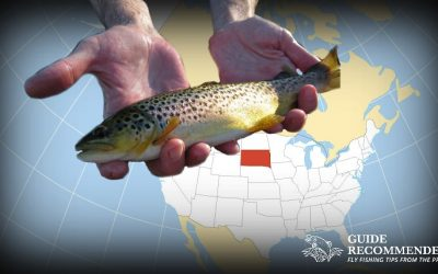 9 Best Places to Fly Fish in South Dakota: MAPS INCLUDED