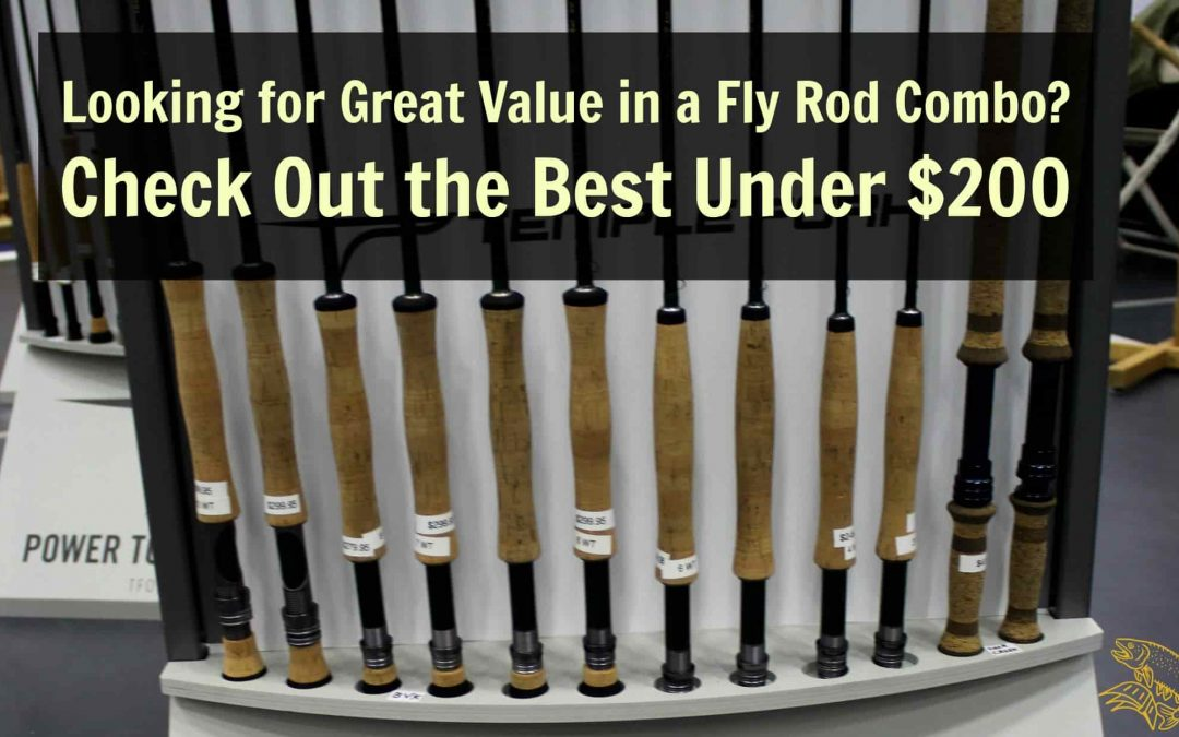 Best Fly Fishing Combo Under $200: Fly Rod, Reel and Line!