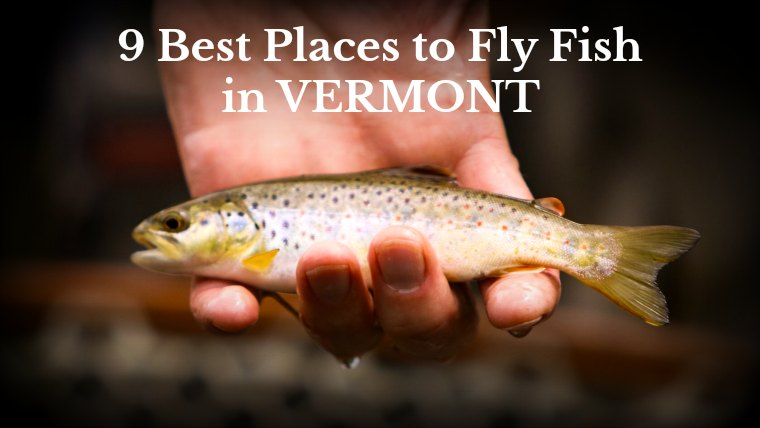 9 Best Places to Fly Fish in Vermont: MAPS INCLUDED