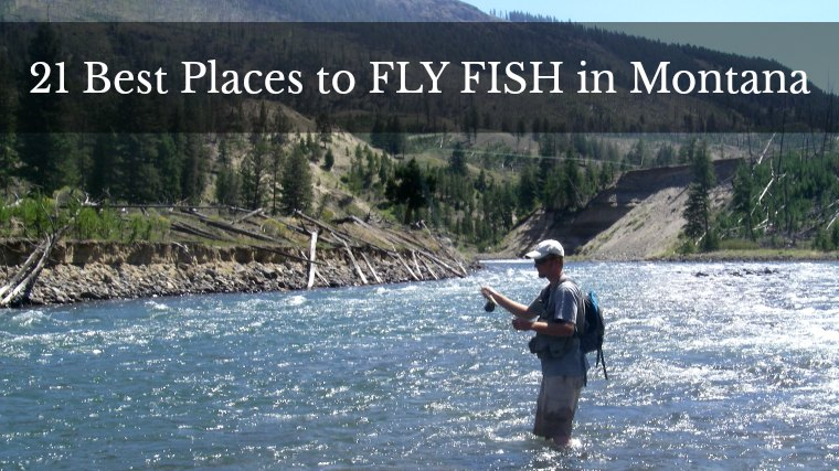 21 Best Places to Fly Fish in Montana: MAPS INCLUDED