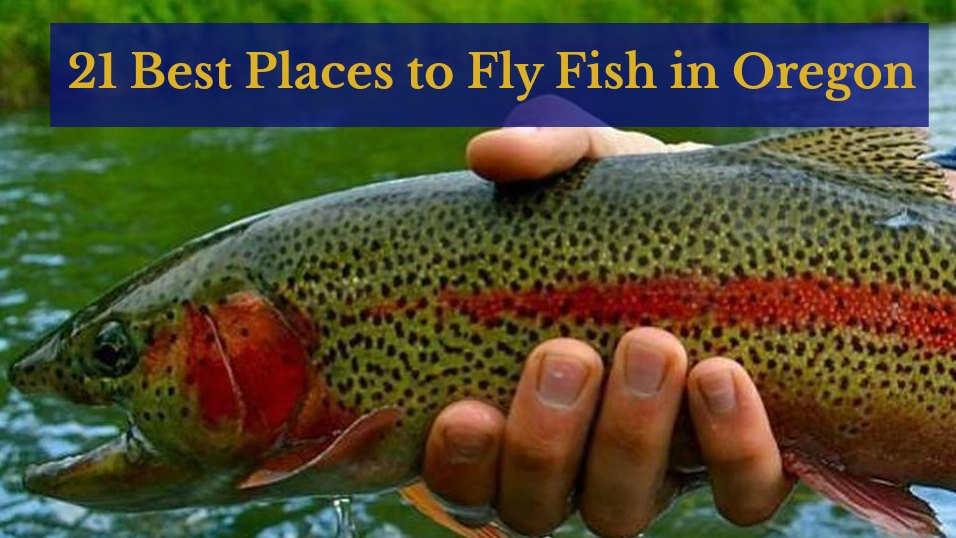 21 Places to Fly Fish in Oregon: MAPS INCLUDED