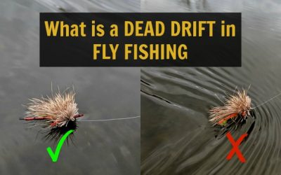 What is a DEAD DRIFT in Fly Fishing plus Tips for Casting