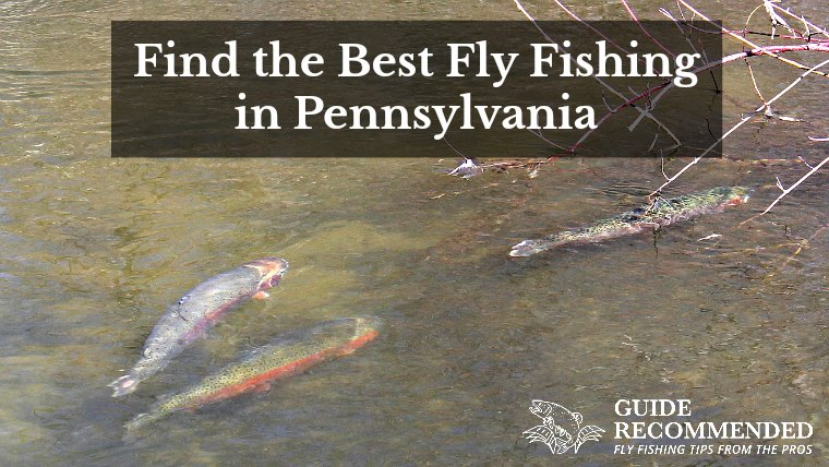 17 Best Places to Fly Fish in Pennsylvania: Maps Included