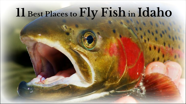 places to fly fish in Idaho