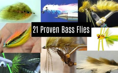 Bass Flies (21 Proven Fly Fishing Patterns That Catch Bass!)