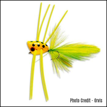 Peeper Popper Fly for Bass