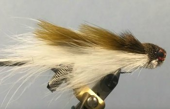 Swimming Jimmy Streamer Fly for Bass