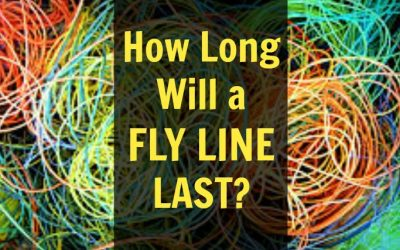 How Long Does a Fly Line Last? (Plus 5 Ways to Make it Last)