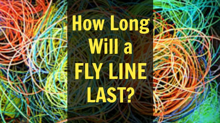 How Long Will A Fly Line Last