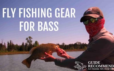 Best Fly Rod, Reel and Fly Line for Bass: Gear-Up Right!