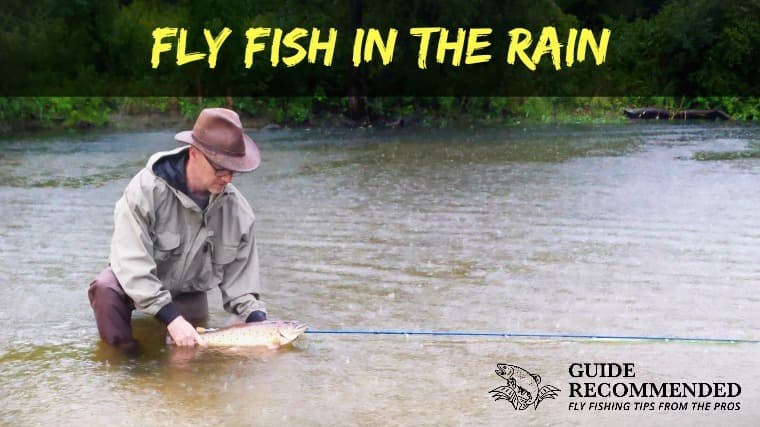 Can you FLY FISH in the Rain? Plus 5 Tips for More Trout