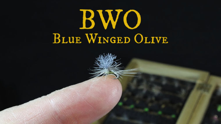 BWO Blue Winged Olive for Fly Fishing