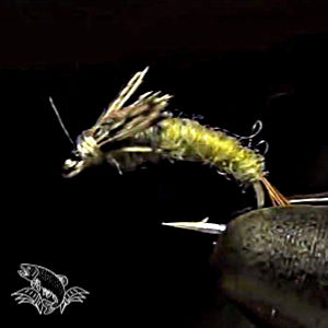 Barr Emerger BWO for Fly Fishing
