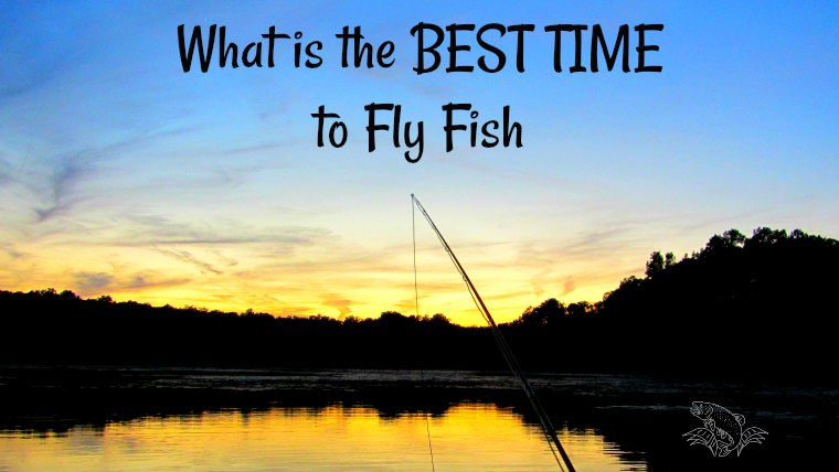 What is the BEST TIME of DAY to Fly Fish for Trout