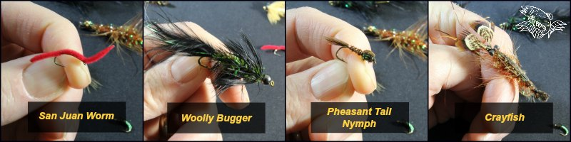 Wet Flies for Fly Fishing