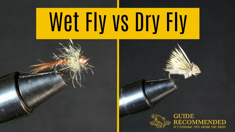 What is the Difference Between a WET FLY vs DRY FLY