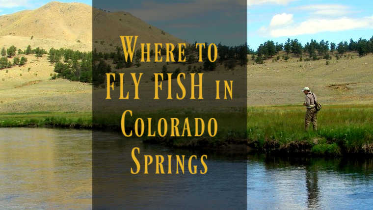 7 Best Places to Fly Fish in Colorado Springs: Maps Included
