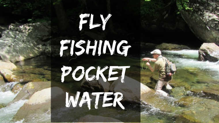 fly fish pocket water