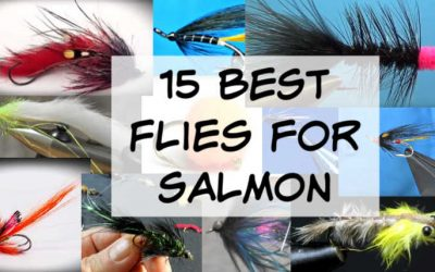 15 Best Flies for Salmon (Pictures Included)