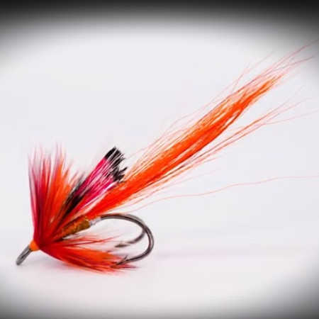 Allys Fly for Salmon